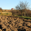 Plowed field — Stock Photo #32593239