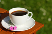 Coffee in garden — Stock Photo