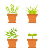 Pot plants — Stock Vector