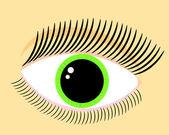 Green woman eye — Stock Vector
