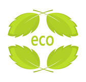 Eco leaves — Stock Vector