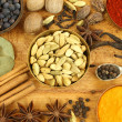 Spices mix — Stock Photo