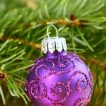 Christmas purple ornament — Stock Photo #34838983