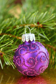 Christmas purple ornament — 图库照片
