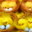 Stock Photo: Easter chicks