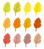 Autumn leaves colors — Stock Vector