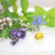 Fresh herbs and capsule — Stock Photo #38344691
