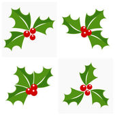 Christmas holly set — Stock Vector