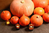 Autumnal pumpkins — Stock Photo