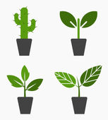 Plants in pots — Stock Vector