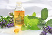 Fresh herbs and oil — Stock Photo