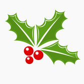 Holly berry Christmas symbol — Stock Vector