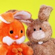 Easter rabbits — Stock Photo