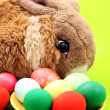 Stock Photo: Easter rabbit with eggs on green