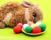 Easter rabbit with eggs on green — Stock Photo