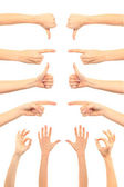 Collage of woman hands on white backgrounds — ストック写真