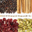 Spices and berries for gin tonic and spoon — Stock Photo