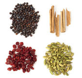 Four Spices and Berries for Gin Tonic — Stock Photo