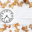 Stock Photo: Clock and leaves on a white plank