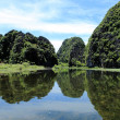 Tam Coc Vietnam — Stock Photo #25368591