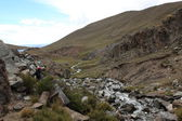 Mountian Stream in the Andes — Stock Photo