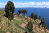 Village and Terrace Farming at Island Taquile Lake Titicaca — Stock Photo