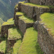 Machu Picchu the Inca city in the clouds — 图库照片