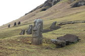 Moais at Easter Island — Stock Photo
