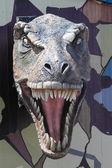 Tyrannosaurus Rex Ulaanbaatar — Stock Photo