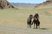 Mongolische cowboy — Stockfoto