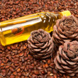 Three pine cones and oil — Stock Photo