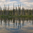 Lewis Lake Reflection - Stock Photo