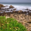 Spanish Bay — Stock Photo
