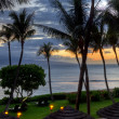 Maui Sunset under Palms — Stock Photo #21904567