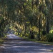 Bonaventure Cemetery, Savannah — Stock Photo #21904601