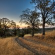 Ranch Road Sunrise — Stock Photo #21905607
