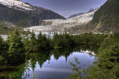 Mendenhall Glacier, Juneau — Stock Photo