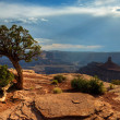 Canyonlands from Dead Horse Point — Stock Photo