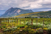 Mount Crested Butte — Stock Photo