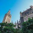 Seville Cathedral - Stock Photo