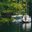 Boats and Yachts on Lake Windermere, Lake District — Stock Photo