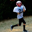 AmericYouth Football — Stock Photo #20091671