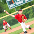 Young baseball player pitching the ball - Stock Photo