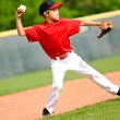 Youth ball player throwing ball — Stock Photo #22595751
