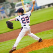 Stock Photo: Little league baseball pitcher