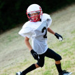 Young football receiver - Stock Photo