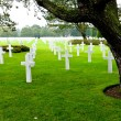 American Cemetery at Normandy — Stock Photo