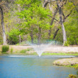 Stock Photo: Beautiful pond water fountain