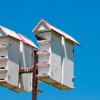 Up-close shot of bird houses — Stock Photo