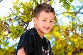 Ung pojke upp i trädet — Stockfoto